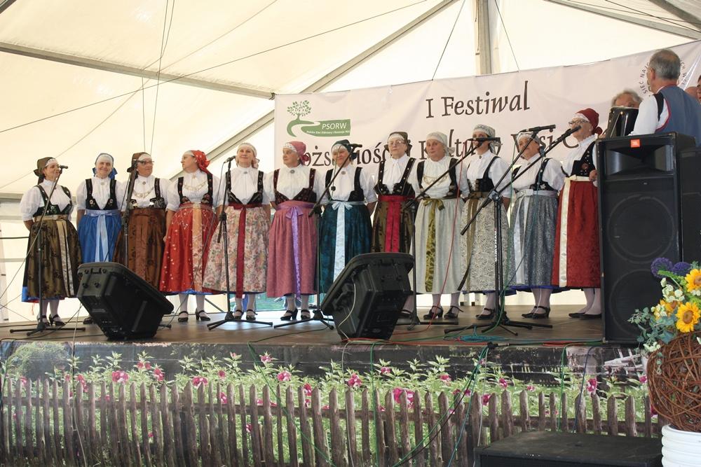 festiwal_psorw_38.jpeg